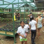 UTSI's ongoing community service work with local youth center Forjando Alas. Last July, we built a small greenhouse for vegetable growing and learning and FUN!